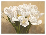 Tulipes Blanches Prints by Leonardo Sanna