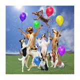 Dogs Partying Posters by  Lund-Roeser