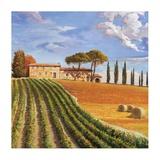 Colline Toscane Prints by Adriano Galasso