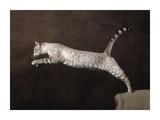 Snow Chocolate Spotted Tabby Bengal Cat Print by Yann Arthus-Bertrand