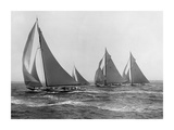 Sloops at Sail, 1915 Print by Edwin Levick