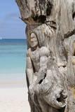 Wooden Tree Sculpture, Long Bay, Antigua, Leeward Islands, West Indies, Caribbean, Central America Photographic Print by Robert Harding