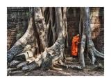 Monk reading in Ta Prohm temple, Angkor Wat Prints by Scott Stulberg