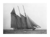 The Schooner Karina at Sail, 1919 Art by Edwin Levick