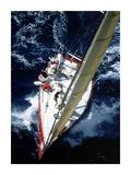 Sailboat racing, Miami Poster by Sharon Green
