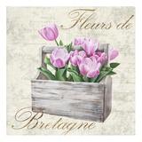 Fleurs de Bretagne Poster by Remy Dellal