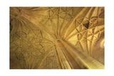 Almeria Cathedral Posters