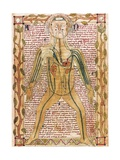 Arterial and Venous System, 'Treatise on the Human Body' 1292 Poster
