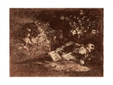 Nothing. It Will Say. Art by Francisco de Goya