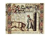 The Bull of Plasencia Print