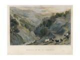 Shepherd in Germanasca Valley, the Alps Posters