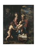 The Holy Family Posters by  Raphael