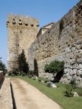 Spanish Roman Walls and Archbishop's Tower Photo