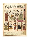 Treatise on Births, Islamic Divination Book Posters by Abul Mas'ha