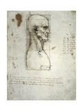 Sketch of the Head Proportions Base on Vitruvius Posters by  Leonardo da Vinci