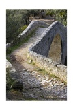 Bridge over Llierca River Prints