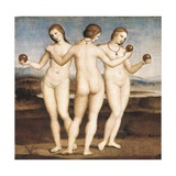 Three Graces Prints by  Raphael