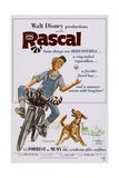 Rascal Posters