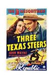 Three Texas Steers Prints