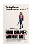 Final Chapter: Walking Tall Posters