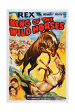 King of the Wild Horses Art