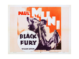 Black Fury Prints