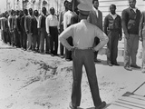 African American Marine Recruits Line Up to Begin Basic Training Photo