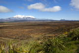 Mount Ruapehu and Mount Ngauruhoe Viewed from Highway 1 Desert Road Photographic Print by  Stuart