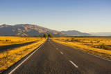 Late Afternoon on the Highway on the Way to Twizel, South Island, New Zealand, Pacific Photographic Print by  Michael