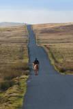 Lone Hunter, Caldbeck Fell Road, Back O'Skiddaw, Cumbria, England, United Kingdom, Europe Photographic Print by  James