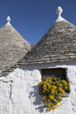 Traditional Trullos (Trulli) in Alberobello, UNESCO World Heritage Site, Puglia, Italy, Europe Photographic Print by  Martin