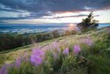 Malvern Hills at Sunset, Worcestershire, England, United Kingdom, Europe Photographic Print by  Matthew