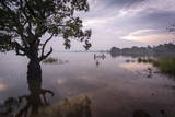 Fishermen Return at Dusk, Polonnaruwa Lake, Polonnaruwa, Sri Lanka, Asia Photographic Print by  Charlie