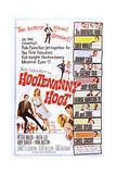 Hootenanny Hoot Art