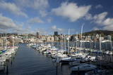 City Centre and Waterfront from Chaffers Marina, Wellington, North Island, New Zealand, Pacific Photographic Print by Nick Servian