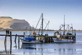 Fishing Boats on the Otago Peninsula, South Island, New Zealand, Pacific Photographic Print by  Michael