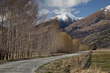 Glenorchy to Paradise Road, Queenstown, South Island, New Zealand, Pacific Photographic Print by  Nick