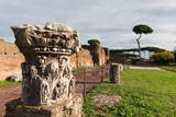 Imperial Palace at Forum Romanum, Palatine Hill, Rome, Lazio, Italy, Europe Photographic Print by  Carlo