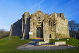 Oystermouth Castle, Mumbles, Swansea, Wales, United Kingdom, Europe Photographic Print by  Billy