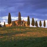 Farmhouse and Trees Near Pienza, Siena Province, Tuscany, Italy, Europe Photographic Print by John Miller