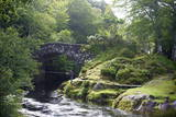 Fly Fishing on the River Shiel, Near Acharacle, Invernesshire, Scotland, United Kingdom, Europe Photographic Print by Duncan Maxwell