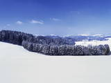 Winter Landscape, Glottertal Valley, Black Forest, Baden Wurttemberg, Germany, Europe Photographic Print by Marcus Lange
