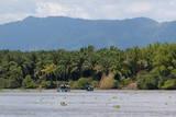Sierpe River, Osa Peninsula, Costa Rica, Central America Photographic Print by  Sergio