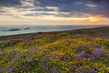 Rhossili Bay, Worms End, Gower Peninsula, Wales, United Kingdom, Europe Photographic Print by  Billy