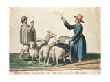 Franciscan Monk Demanding the Alms of Sheeps Print by Baltasar Jaime Martinez Companon y Bujanda