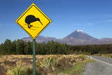 Mount Ngauruhoe with Kiwi Crossing Sign Photographic Print by  Stuart
