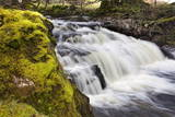 Mossy Rock and Waterfall on Grisedale Beck Near Garsdale Head Photographic Print by  Mark