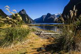 The Steep Cliffs of Milford Sound Photographic Print by  Michael