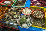 The Modern Fish Market in Busan, South Korea, Asia Photographic Print by  Michael