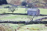Field Barn and Dry Stone Walls in Garsdale Photographic Print by  Mark